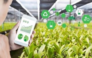 finanziamento agricoltura